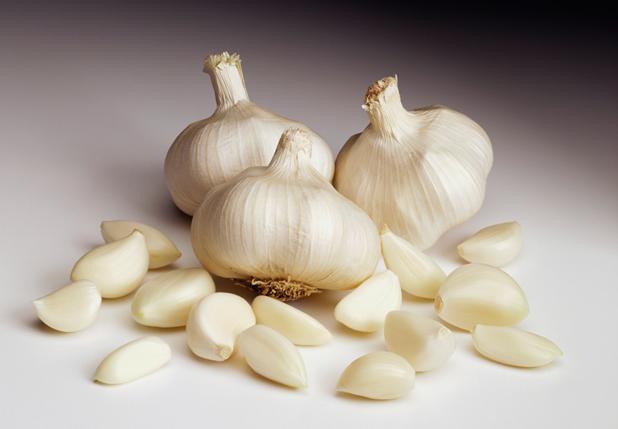 garlic_hss
