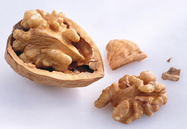 walnuts_hss