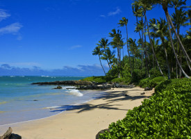 How to See Maui in 48 Hours