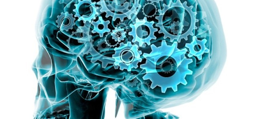 Brains 'Turbo' Switch May Store MORE Info And Boost Our Brainpower