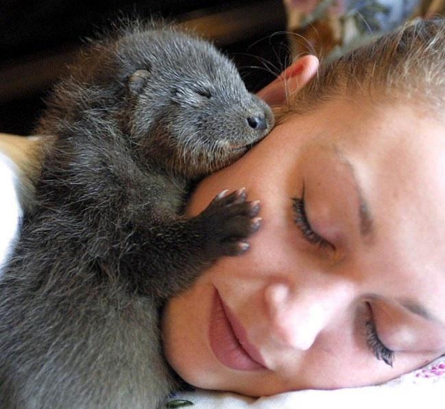 KWN  - World's Cutest Baby Animals 4