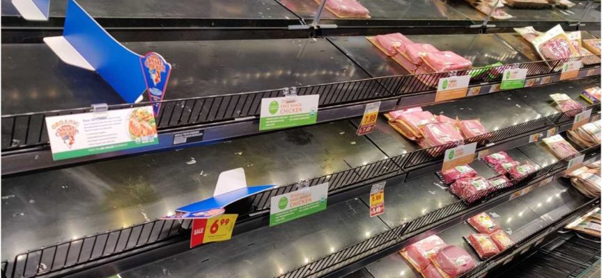 Celente – GET READY: Expect More Food Shortages And Higher Prices, But The Crisis Will Be Far Worse Than You Realize